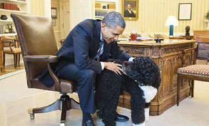 US President Barack Obama is proud pet parent of Bo and Sunny.