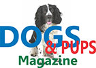 Dogs and Pups Magazine